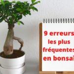 9-erreurs-en-bonsaï